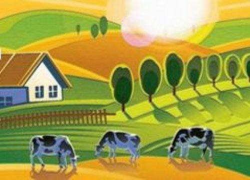 La Santé Environnement en Pays de Morlaix
